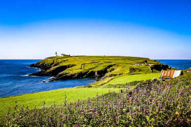galley, head, west, cork, ireland, wild atlantic way